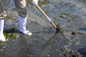 7砂泥に埋まった網